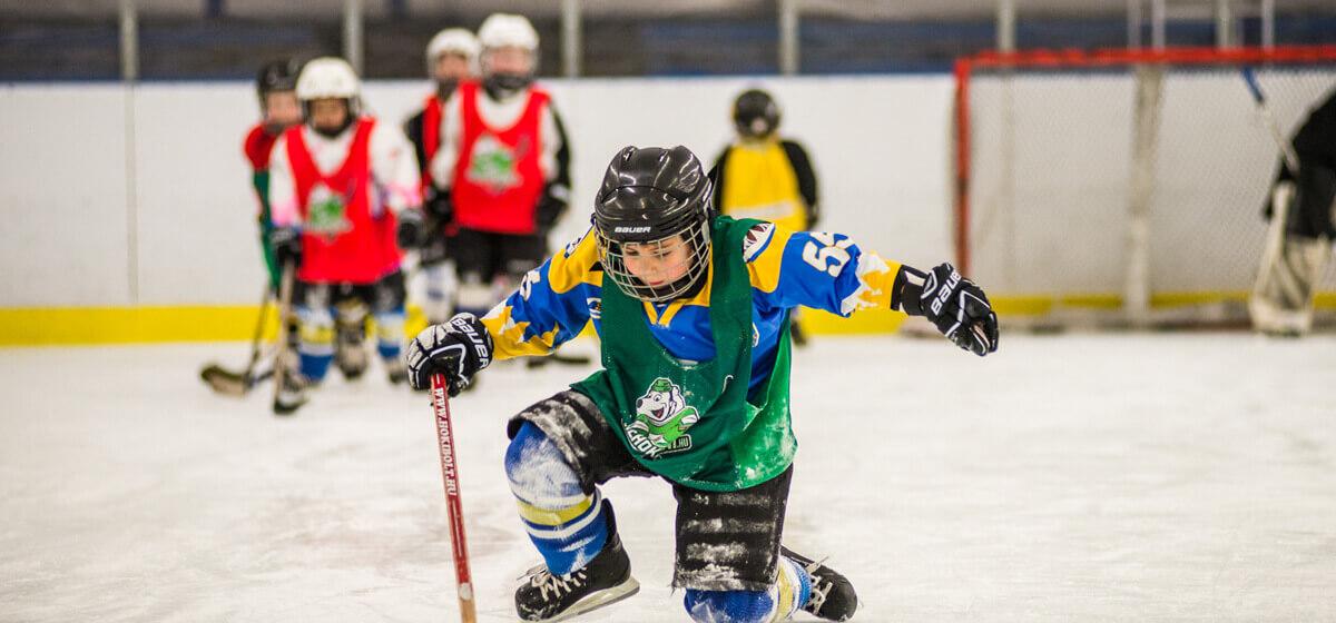 hobbi jégkorong liga