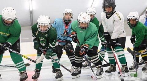 Indul a Fradi hokiosztály - jégkorongedzés